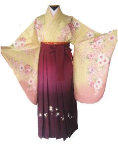 a2黄桃桜、ワインぼかし刺繍袴