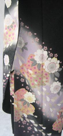 5 .黒霞舞桜2