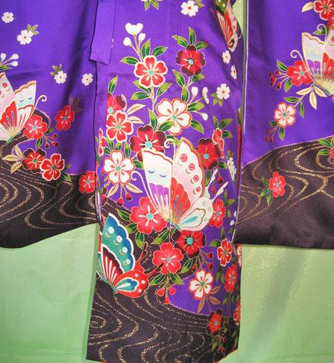 紫蝶+赤蝶帯7才女児晴れ